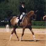 CHANTOR - CDI Saumur 1996