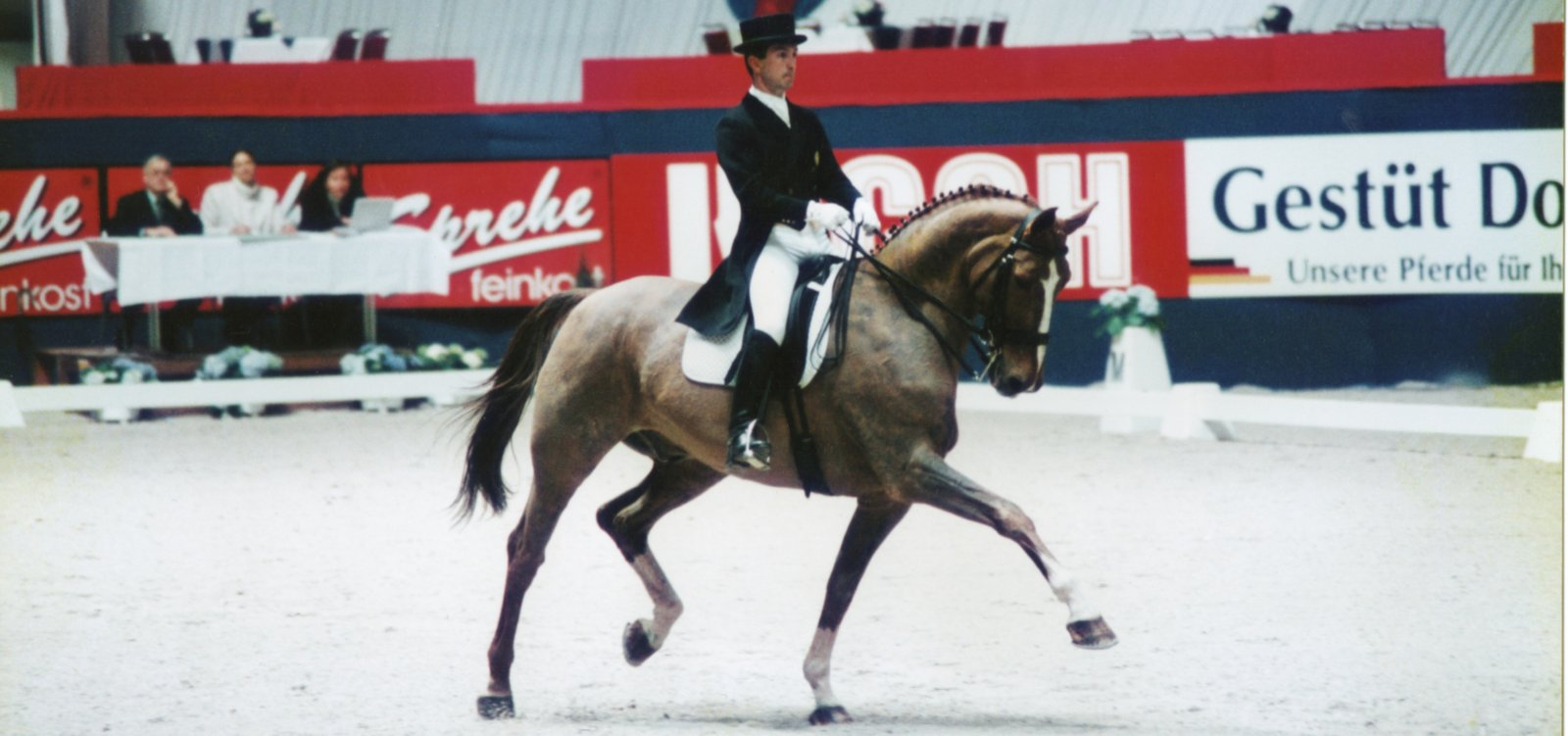 carlos pinto cavalier international de dressage