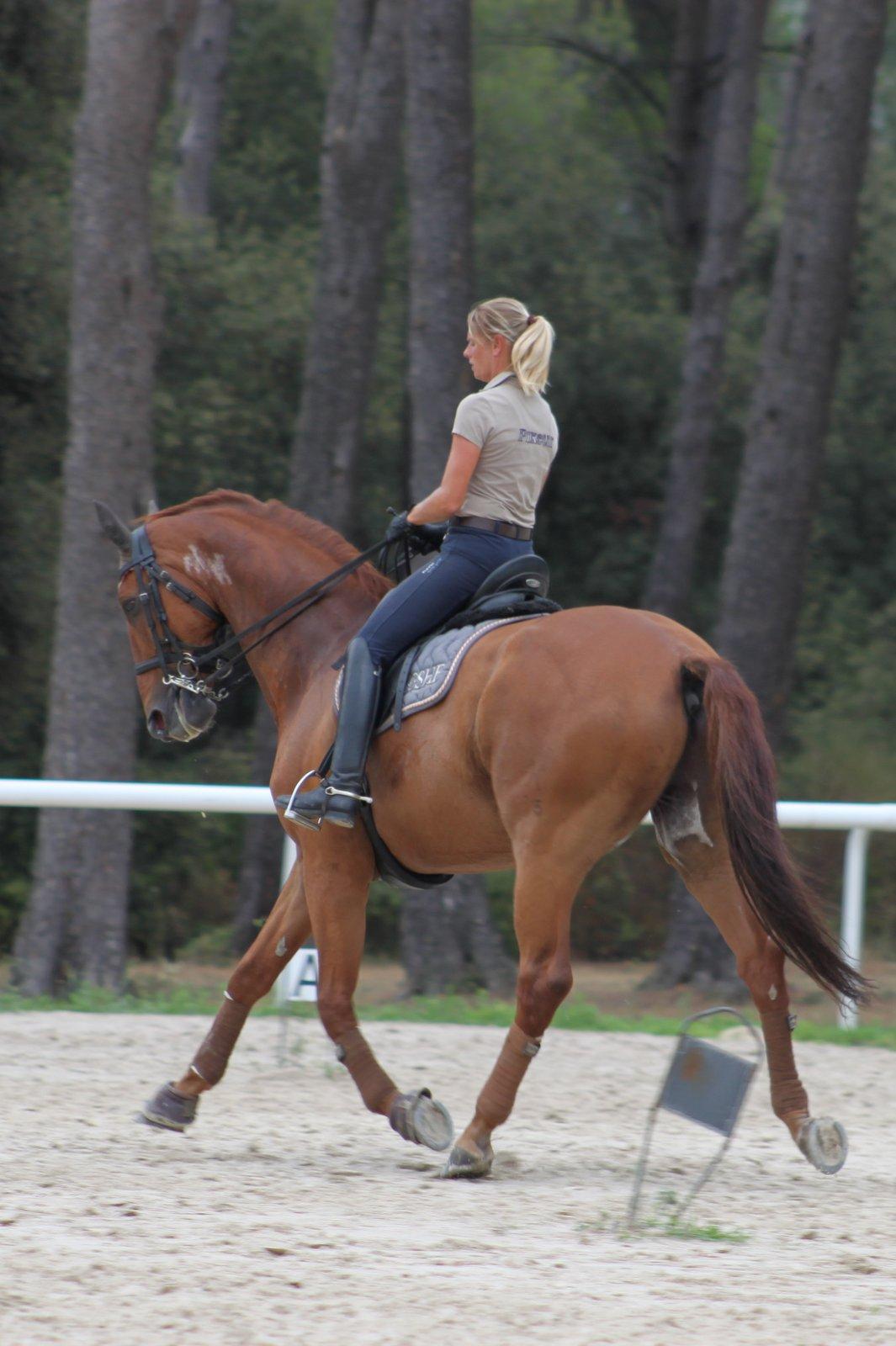 isabelle-pinto-cavaliere-de-grand-prix-po%cc%82le-equestre-carlos-pinto-aix-en-provence-marseille-13