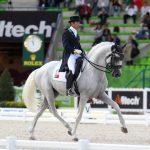 SOBERANO III - Jeux équestres Mondiaux 2014