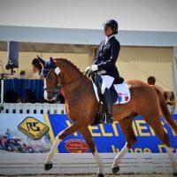 Isabelle Pinto et Sultan des Paluds aux Championnats du Monde des jeunes chevaux à Verden