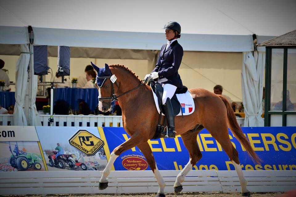 Isabelle Pinto et Sultan des Paluds - Championnats du Monde des jeunes chevaux à Verden